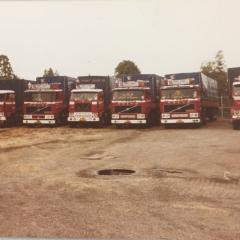 Several old trucks in a row